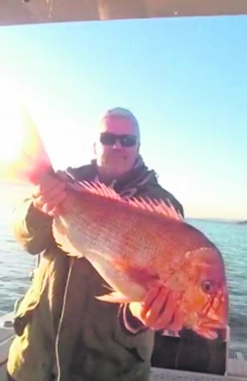 Peter Vink and his 6.5kg of big red!