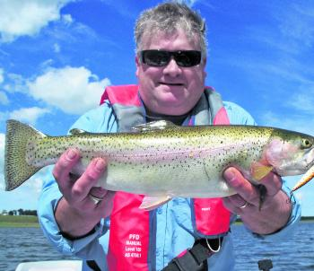 A solid Elingamite rainbow taken on a Black Magic B-Max minnow just prior to the drop in water levels.