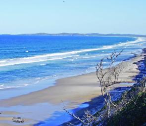 There are kilometres of beach to drive between Ballina and Evans Head but don't waste your time attempting it at high tide. Driving or parking on Fragile coffee rock and dune vegetation should be avoided at all costs.