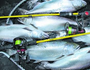 Great catches of Chinook can be made in Bullen Merri in terms of numbers, meaning you can usually take home a feed.