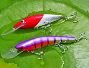 Two tough Aussie-made minnows. A Bounty Hunter, top, and a GillRaker, below.