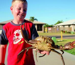 The crabbing just keeps getting better around Bowen.