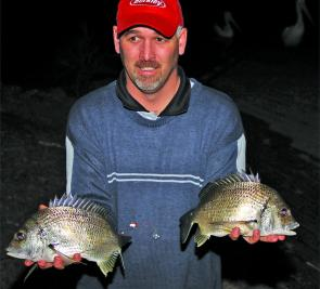 The evening run-out tide can produce a big bag of bream like these 750g fish, which took baits of yabbies.