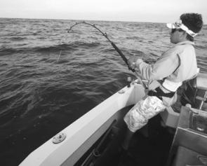 Thirty seconds before the tag goes in, Andrew Finney stays tight to a Banks black marlin on 15kg tackle with the wind-on leader right at the rod tip and the fish almost within tagging range.
