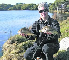A couple of the bream I caught from Lake Battye at Robe.