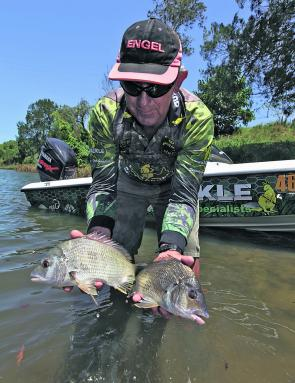 Don Johnson with the sort of quality bream throughout Wallis Lake and the rivers at the moment.
