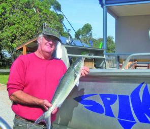 An example of the excellent Australian salmon being caught on the surf beaches near Bemm River.