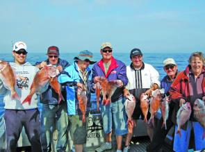 All the crews are happy when the snapper turn up.