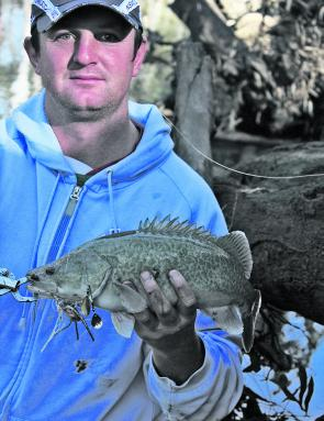 Kurt McPherson with his first Murray cod on a lure.