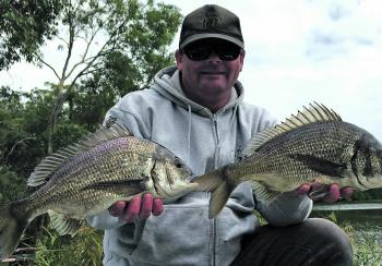 June is a great month to target big Glenelg River bream.