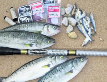 When fishing the surf beaches such as Cape Woolamai, having an assortment of baits and terminal tackle can aid in success by being able to change and adapt to the species and conditions on the given day.