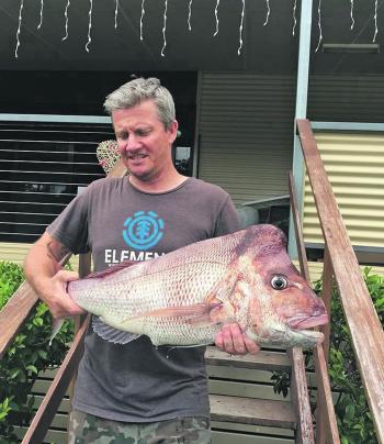 The ever-reliable snapper are still on the chew.