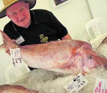 An 11.86kg whopper, which was the heaviest snapper weighed in at the Tea Tree Snapper Competition.