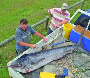 Terry Cronin of Gerringong with a 72kg marlin trolled off Crowdy Head.