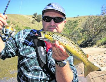 The Mitta Mitta River constantly produces some lovely fish in the autumn months.