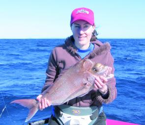 Soft plastics have been accounting for some nice reef species like this snapper caught at Mooloolaba by Nicole.