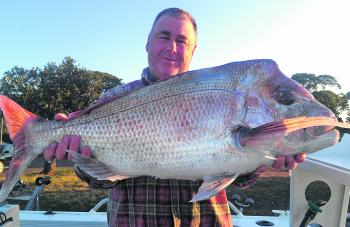 Snapper of this quality (8.26kg) have become regular catches for Jason Isaac lately.