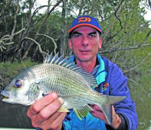 Bream are active in shallow, weedy areas now, so get those surface lures out and fire away.