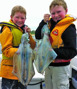Tom and Josh Webb with a couple of classic peninsula squid. Calamari like this are still floating around if you fish the deeper water off Lonsdale Bight.