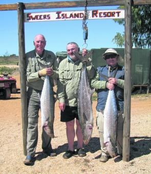 Because of the lack of rain the mackerel season has been good, as the early Sweers crews found out.