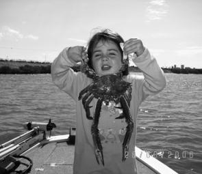 Chloe with crabs – they are on the move at the moment.