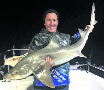 Winter and into spring are great times to target big gummy sharks in the Western Entrance