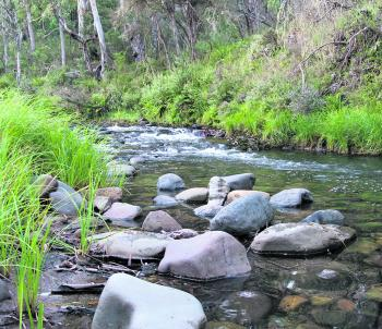 The smaller streams will come to life with expected rainfalls