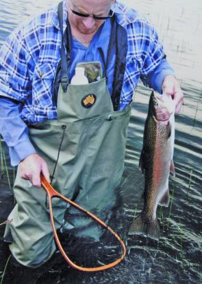 Rainbows of this size have been a popular catch since the trout season opened.