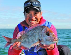 Scarborough's table delights: a perfect sized snapper caught on a soft plastic.