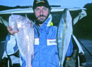 The author with a 4kg snapper and a just-legal kingfish taken from the rocks in rain and rough weather on floating pilchards meant for bream.