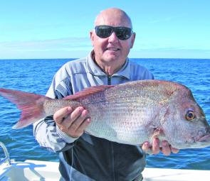 Snapper such as this fine specimen continue to dominate catch lists off Noosa.