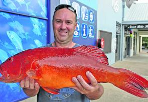 Tewantin angler Richard Stonehouse tempted this 4kg coral trout with a live yakka at Sunshine Reef.