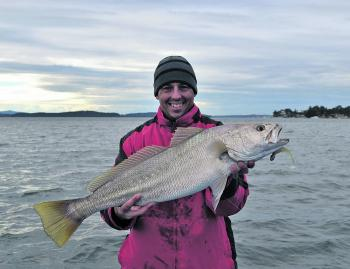 A solid mulloway is always a welcome by-catch when targeting large estuary flathead.