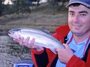 Lake Lyell produces some lovely rainbow trout in November on lure and fly. Low light periods are the key.