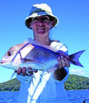 Claire Geelan caught this 50cm snapper on a prawn in Pittwater.