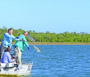 Releasing two tarpon after a cracking double hook-up.