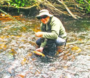 The author with a terrific small stream brown trout.