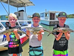 Jack, Matthew and Daniel Cashman boated flathead from 50cm to 65cm at the river mouth while on a Noosa River Fishing Safari.