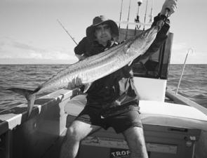 School-sized Spanish mackerel like this will be about in big numbers off Townsville in August.