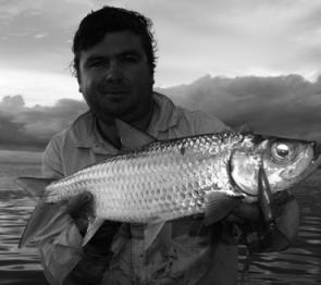 Tarpon are a great sportfish for tropical anglers.