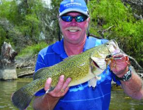 A total of 314 Murray cod were 'measured in', including this healthy Mumbler eating cod caught by Dave Silva from Lowrance.