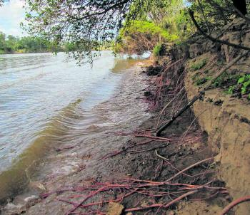 Some of the erosion between Rogan Bridge and Crowther Island on the Clarence River.