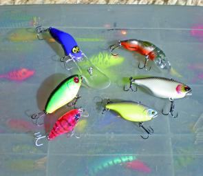 This range of lures covers all water depths where bass are likely to be encountered this month, from casting to banks, jigging and trolling deep. Top left, Halco Poltergeist 50 (runs to 8m-plus), Trollcraft Crawdaddy; middle, Lake Police 0 Footer, Jackall