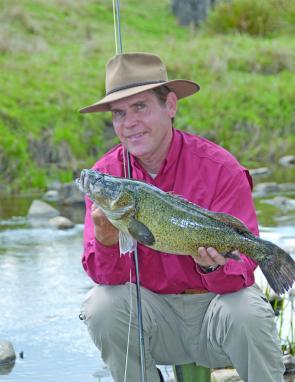 The author with a fat New England cod taken on a 9 weight G.Loomis Native Run fly rod and size 4/0 Deceiver.