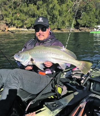 Rob Haslam with a soapy mulloway.