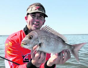 Table size snapper have been prevalent throughout the Redcliffe Peninsula.