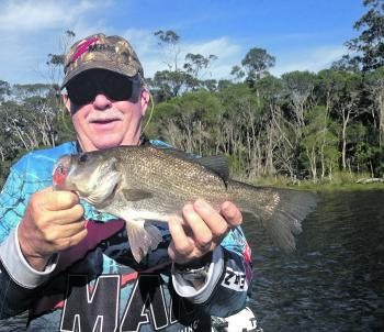 Gary Brown with an estuary perch caught on a surface lure.