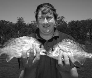 Simon with a few plastic-munching bream from the upper reaches of Wagonga Inlet.
