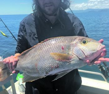 The author with a goldband snapper.