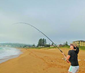 The beaches have been a bit hit and miss but you need to be out there having a go to catch anything.
